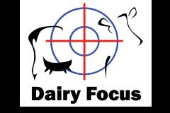 Dairy Focus